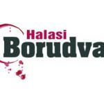 VIII. Halasi Borudvar 2014