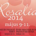 Rosalia Rosé Fesztivál 2018