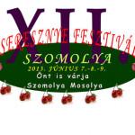 XIII. Szomolyai Cseresznyefesztivál 2014