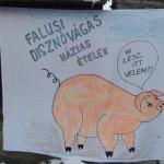 XIX. Hagyományőrző Falusi Disznótor Nagybörzsöny 2019