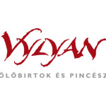 villany-vylyan-logo