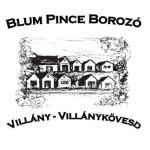 villanykovesd-blum-logo