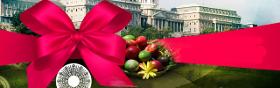 kiemelt ajánlat - 2019 Húsvéti programok