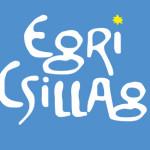 II. Egri Csillag Borfesztivál 2013