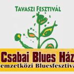VI. Csabai Blues Ház – Nemzetközi Bluesfesztivál 2015