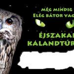 Budakeszi Vadaspark Éjszakai Kalandtúrák 2015. április