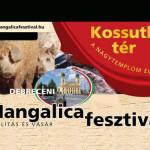 X. Debreceni Mangalica Fesztivál 2019