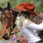 V. Szent György napi lovasünnep 2015