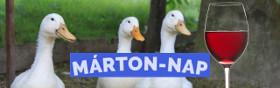 kiemelt ajánlat - Márton-nap 2019 programok