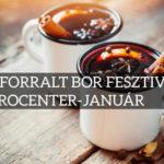 V. Forralt Bor Fesztivál -és Téli Italmámor 2020